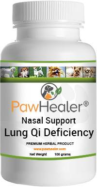 Lung Qi Deficiency Nasal Congestion