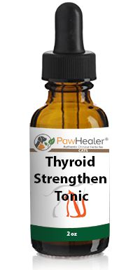 Thyroid (Stregthen) Tonic - Cats