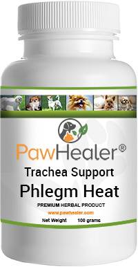 Trachea Support: Phlegm Heat Formula